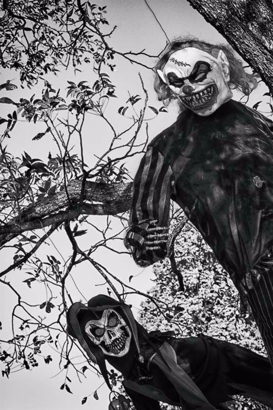 Halloween: Evil clowns in the trees
