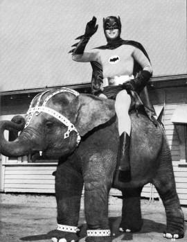 Batman rides elephant