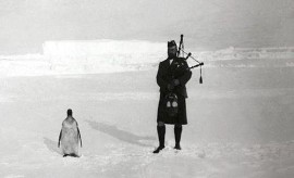 Serenading Penguins with Bagpipes